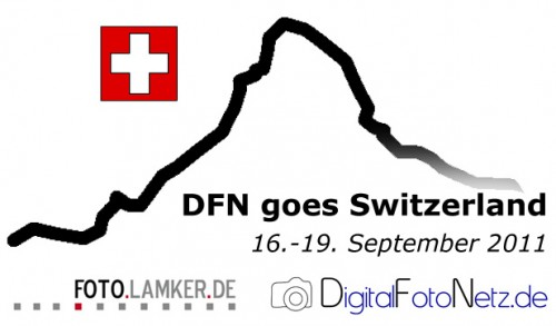 DFN goes Switzerland 2011