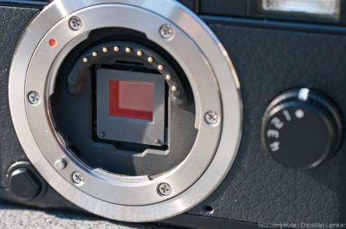 Sensor & Bajonett Pentax Q